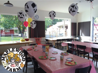 Free Birthday Activities Vancouver ~ Vancouver winter birthday party guide {giveaways jan 23 27
