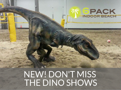 6Pack Indoor Beach Dino Show
